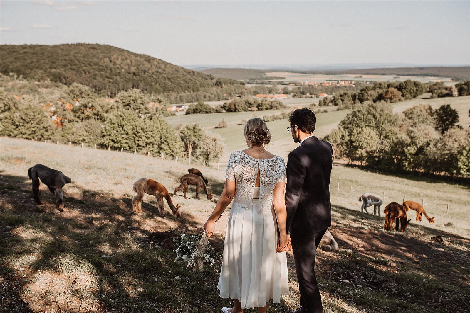 Brautpaar auf Waldlandschaft schauend, händchenhaltend, Rückenansicht